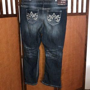 Hydraulic Jeans 22W